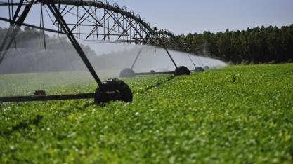 Irrigação por pivô central triplicou entre 2000 e 2017, mostra novo levantamento