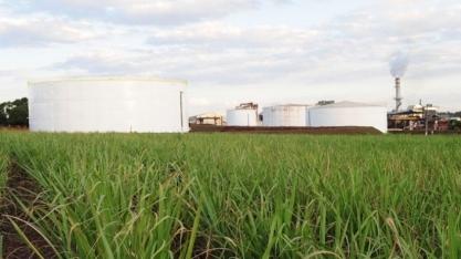 Consumo de etanol bate recorde, mas açúcar derrapa