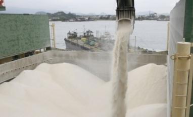 Açúcar bruto recua para mínima de oito semanas em Nova York