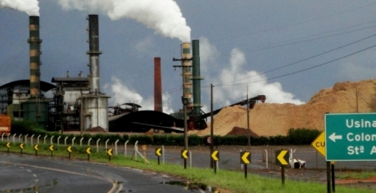 Usina Colombo lucrou R$ 194 milhões na safra 2018/19, aumento de 93%