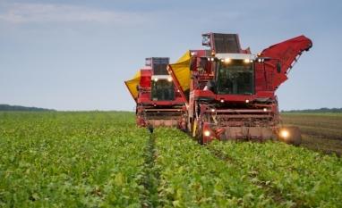 Cresce produção de açúcar na Rússia