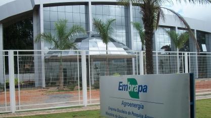 Representantes do BRICS visitam unidades da Embrapa em Brasília
