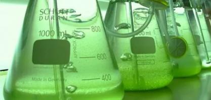 Etanol: Cotação do hidratado sobe pela 6ª semana consecutiva