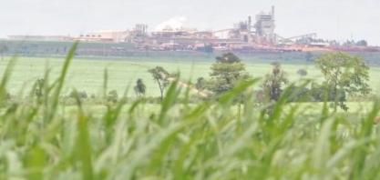 Salto na produção de etanol em MS deve chegar a 8,6 milhões de litros