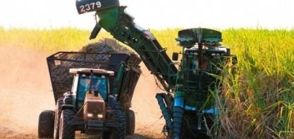 Moagem de cana-de-açúcar chega a 28,9 milhões de toneladas em MS
