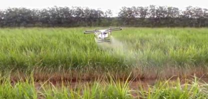 Cooperativa usa drones para pulverização de lavouras