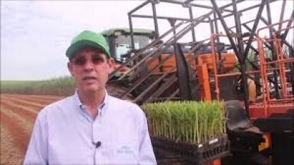 Ismael Perina reduziu o custo de plantio em sua propriedade em quase 30%