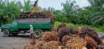 UE impõe tarifas de até 18% a biodiesel indonésio