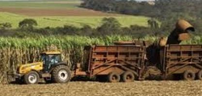 Expectativas para a safra de cana-de-açúcar 2019/2020