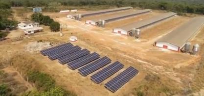 Com energia mais cara no campo, produtores investem em usinas próprias de geração de energia em MT