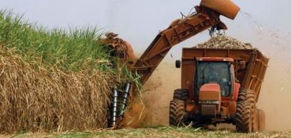 IBGE: valor da produção agrícola nacional cresce 8,3% e atinge recorde de R$ 343,5 bilhões