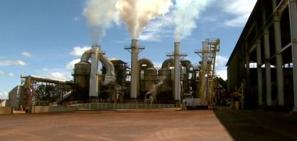 Usinas do Centro-Sul têm alta de 1,2% na moagem da cana e participação do etanol chega a 64,5%