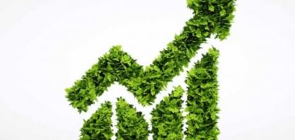 Biocombustíveis e os princípios de sustentabilidade