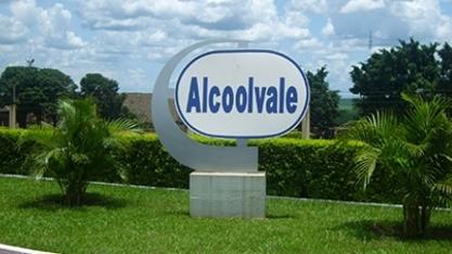 Mudas de Pau Brasil são plantadas na Alcoolvale