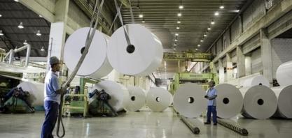 Martelo batido: obras da maior fábrica de celulose do mundo vão gerar 6 mil empregos