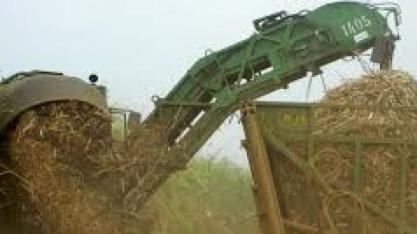 Governo chinês afirma ter interesse em importação de etanol brasileiro