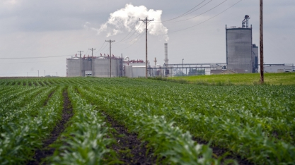 Apoio a etanol nos EUA frustra mercado