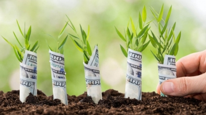 Emissão de CRA em moeda estrangeira deve dobrar para R$ 80 bi em 5 anos