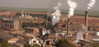 São Martinho: valor de projeto de etanol pode cair com término de benefícios fiscais em Goiás