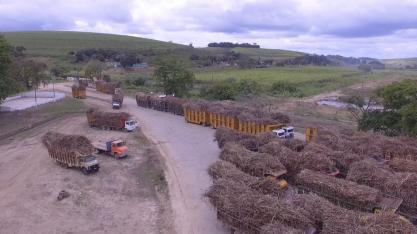 Usina cooperativada de Pernambuco mantém crédito aberto junto a bancos e a equipamentos Dedini