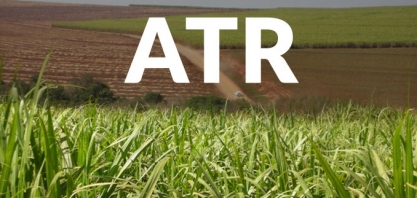 Sindaçúcar AL/SE divulga dados do ATR para o início da safra 2019/2020