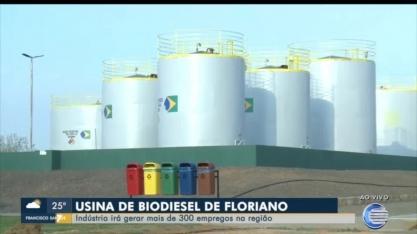 Usina de biodiesel de Floriano volta a produzir e pode ofertar combustível para Petrobras
