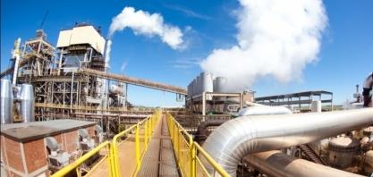 FCStone eleva projeção de moagem de cana no Nordeste; vê maior produção de açúcar