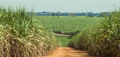 Em GO, R$ 1,3 bi em projetos de etanol estão ameaçados