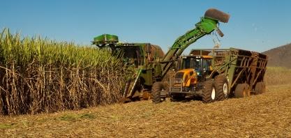 Safra conta com 5,1 mi de toneladas de cana beneficiadas