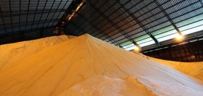 Açúcar: Usinas limitam oferta e preços sobem neste início de mês