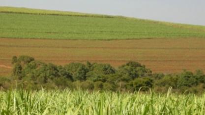 Pindorama participa de capacitação sobre bacias hidrográficas