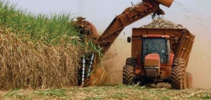 Safra de cana 2020/21 deve registrar moagem levemente superior no Brasil; mix é incerto