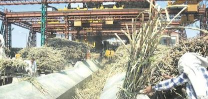 Açúcar: produção da índia em 2019/20 atinge 485 mil t até 15 de novembro, queda de 63,8%