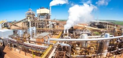 Produção de etanol deve chegar a 35,5 bilhões de litros e consumirá 65% da cana moída