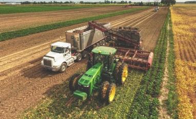 EUA podem elevar importação de açúcar por causa de problema na safra 2019/20