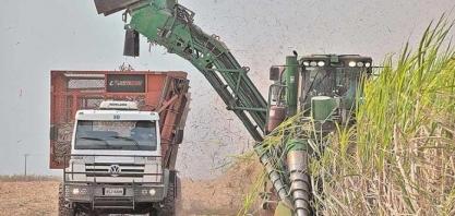 MG: produção de cana-de-açúcar deve subir 7,7% no Estado, diz a Conab