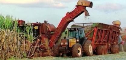 CONAB eleva projeção para a safra de cana no centro-sul em 2019/20 para 589 mi t