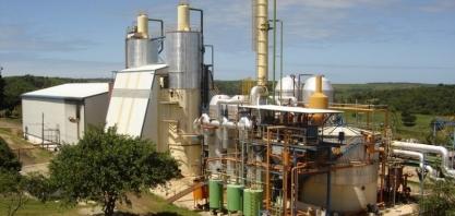 Pindorama já processou 584 mil toneladas de cana