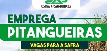 Usina Pitangueiras abre mais de 100 vagas de emprego