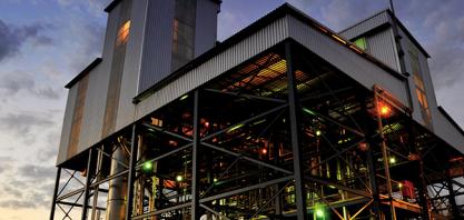 Sebo bovino vira estrela do biocombustível no Brasil