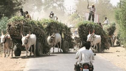 Brasil e Índia devem se unir para tornar etanol uma commodity global, diz ministro Bento Albuquerque