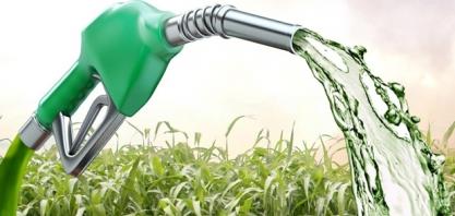 Sindaçúcar-AL: produção acumulada de etanol volta a crescer na safra 19/20