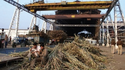 Depois de muito tirar, Índia agora dá suporte para açúcar acima de 14 c/lp