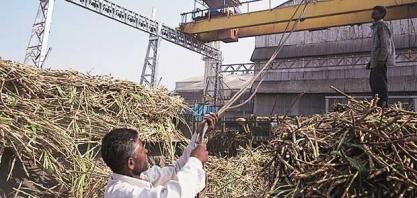 Açúcar/Ásia: alta dos preços encoraja exportações da Índia