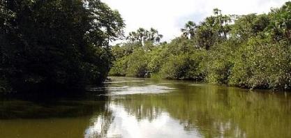 Minas Gerais conta com mais de 27 mil hectares de RPPN