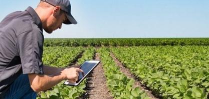 Nota de Esclarecimento: saída dos Técnicos Agrícolas do Sistema Confea/Crea