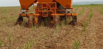 Com o RenovaBio, o setor precisa rever o uso de fertilizantes químicos na lavoura