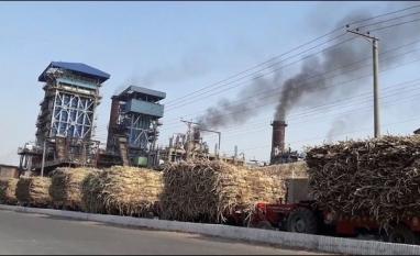 """Setor de açúcar indiano almeja """"oportunidade de ouro"""" na Indonésia"""