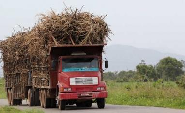 Preço da cana cairá 16% e setor pede prorrogação da dívida e venda direta de etanol