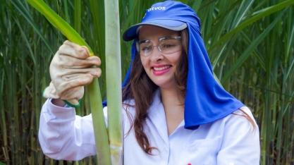 Mulheres do Setor Sucroenergético – Larissa Silveira